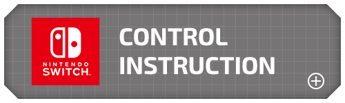 control instruction
